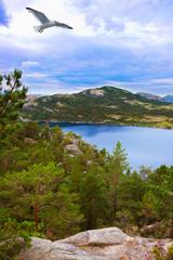 Mountains on the way to the Cliff Preikestolen in fjord Lysefjor