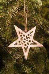 Weihnachtsstern im Baum
