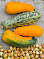 Vegetable marrows 17