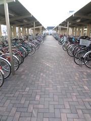 자전거 주차장bike parking lot