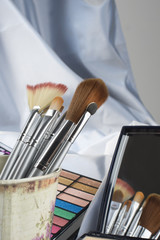 Cosmetics brushes