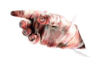 Hand of mummy isolated on white