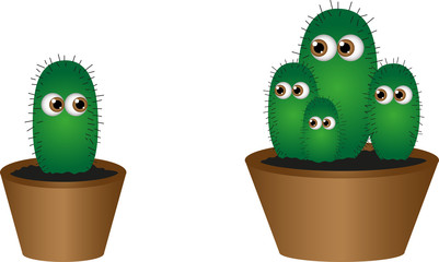 Lonely cactus and his family