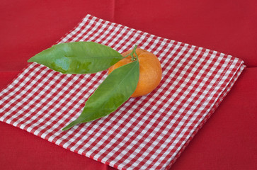 Mandarin and leaf