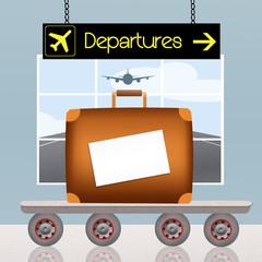 luggage check