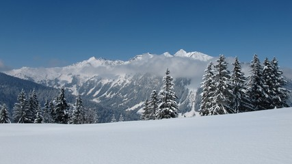 Winter landscape near Gstaad