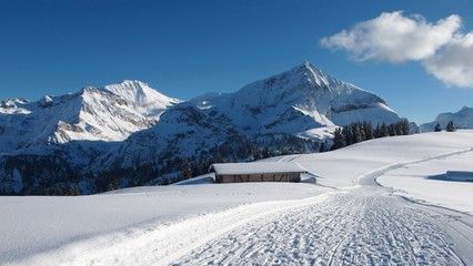 Wildhorn and Spitzhorn in winter, mountains and ski slope