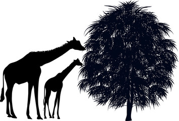two black giraffes near tree