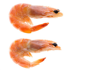 top view of shrimp isolated background