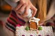 Closeup on teenager girl decorating christmas cookie house