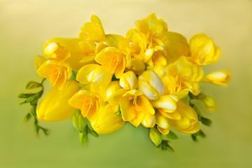 Bouquet yellow tulips freesias