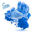 Sea fish - 74436101