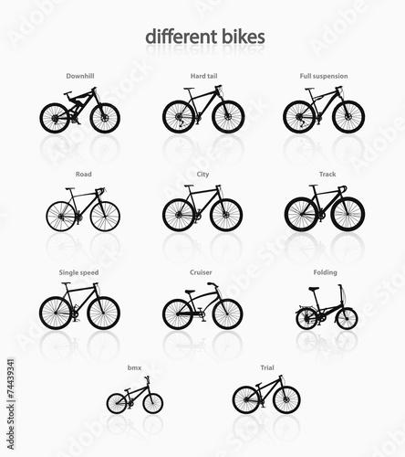 Different bikes. - 74439341