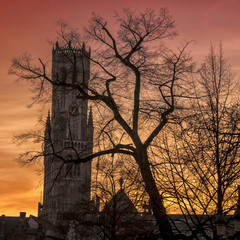 Belfry silhouette at the sunset with trees in Bruges, Belgium