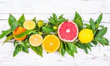 """Постер, картина, фотообои """"Citrus fruits,oranges,lemon,grapefruit, lime, mandarin, kumquat"""""""