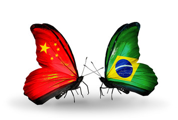 Two butterflies with flags China and  Brazil