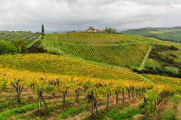 Panoraqma Toscano