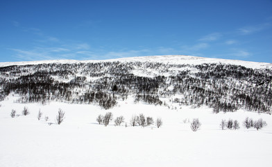 Fjällvy uppe på kalfjället med Ramundberget i Härjedalen