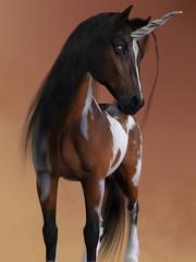 Bay Pinto Unicorn