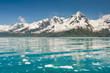 Aialik bay, Kenai Fjords national park, (Alaska) - 74447132