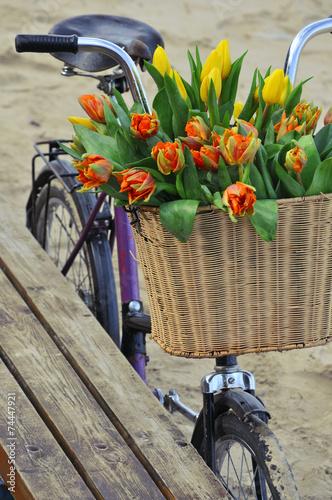 Leinwandbild Motiv Bicycle with a basket full of fresh spring tulips