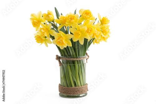 Fototapeten Narzisse Gefüllte Narzissen in einer Vase