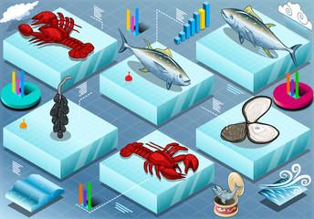 Isometric Infographic of Marine Life