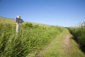 Santiago pilgrimage path