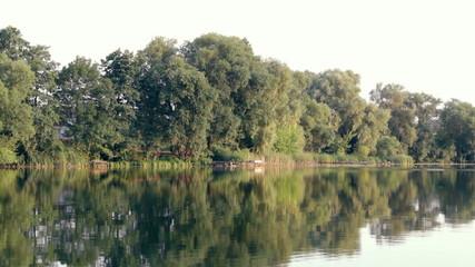 Lake, trees