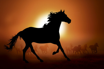 Silhouette of a horse in sunset