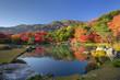 秋の天龍寺