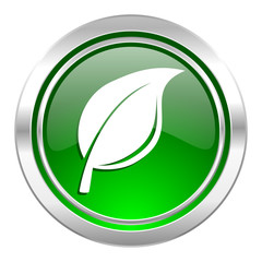 nature icon, green button, leaf sign