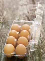 rustic farm fresh chicken egg