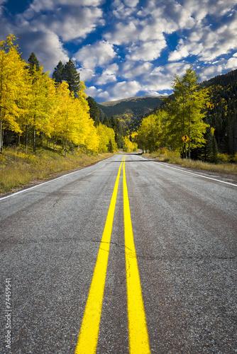 kreta-droga-przez-las-osika