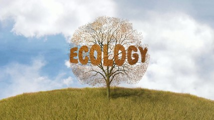 ecology text on a tree