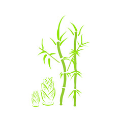 Green bamboo isolated illustration
