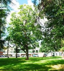 Druskininkai is a spa town on the Neman River