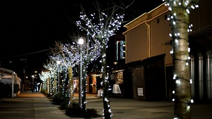 beautiful christmas alley