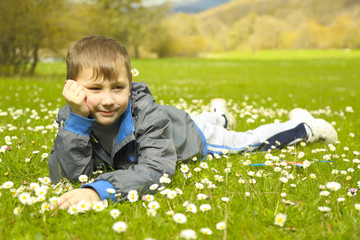 funny boy with daisies in the spring nature