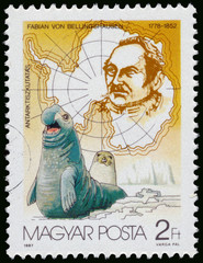 Stamp printed by Hungary shows discovering South Pole