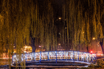 Trees and bridge before Christmas