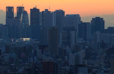 東京の高層ビル群 夕景