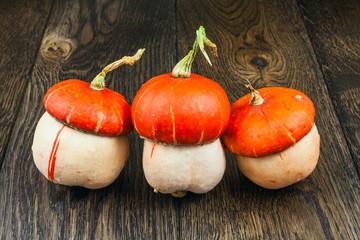 autumn pumpkins naturmort 3