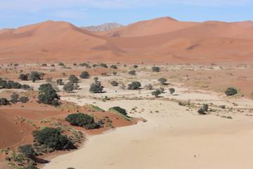 Trip durch Sossusvlei - Namibia