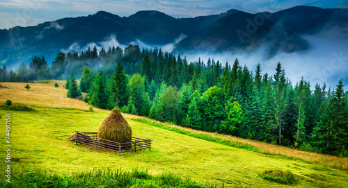 Amazing mountain landscape with fog and a haystack - 74490158