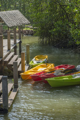 Canoes at lake pier, adventure lifestyle concept.