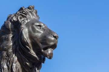 Lion statue at the Queeen Victoria memorial