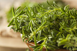 Raw Organic Green Savory