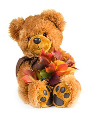 Pretty toy teddy bear with bouquet of autumn leaves