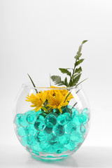 Beautiful flowers in vases with hydrogel